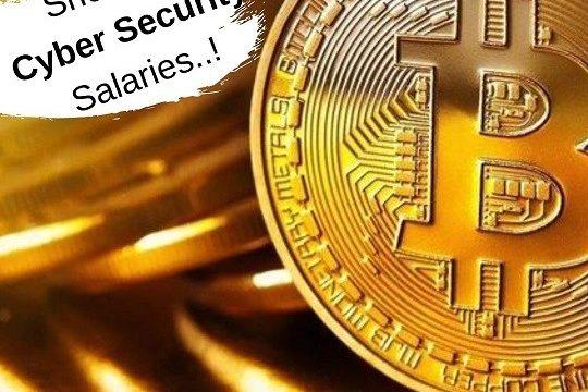 cyber-security-salary-ipcisco.com