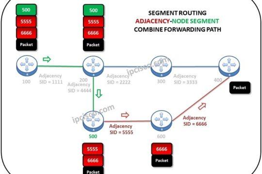 segment-routing-adjacency-node-segment-forwarding-path
